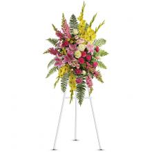 Rays of Light Spray by Teleflora